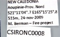 CSIRONC0008 label.jpg