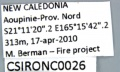 CSIRONC0026 label.jpg