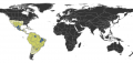 Acanthostichus Distribution.png