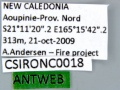 CSIRONC0018 label.jpg